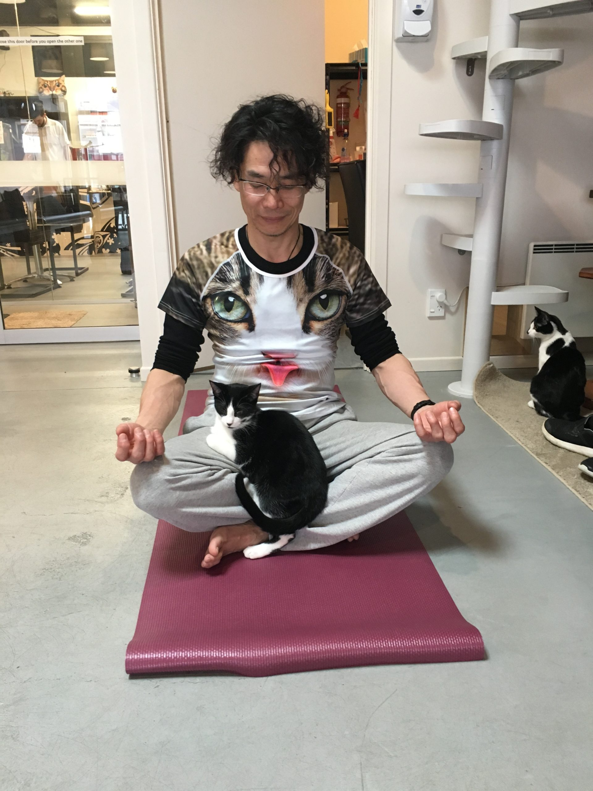 Ken doing yoga with cat on his lap