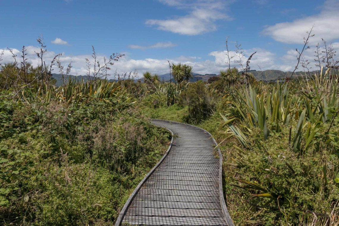 Walkway leading through bush with hills and blue sky in background